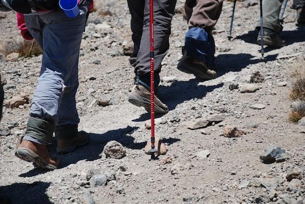 Trekking on Mount Kilimanjaro