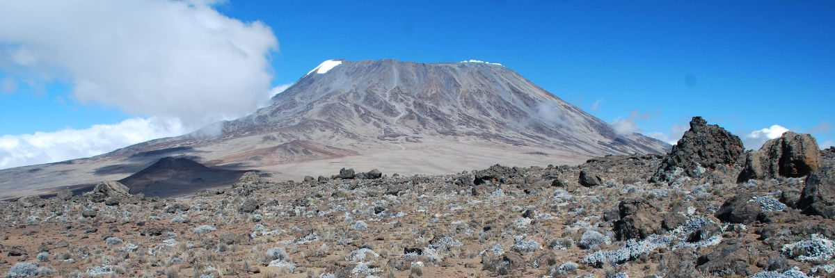 Kilimanjaro's Kibo summit from Mawenzi on a beautiful summer's day