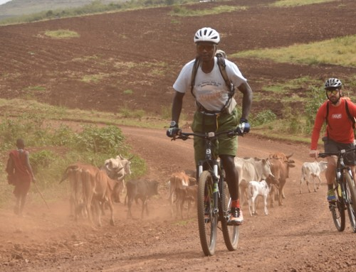 Cycling around the mountain – bike trip through an African Paradise