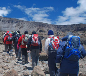Line of trekkers on Kilimanjaro's Shira Plateau